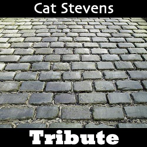 Wild World: Tribute To Cat Stevens