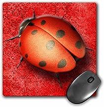 3dRose LLC 8x 8x 0.25Inches Mouse Pad, Pretty Lady Bug sobre un hermoso tapiz Digital fondo en rojo (MP 128817_ 1)