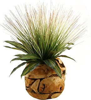 D & W Silks 169083 Onion Grass and Dracaena Leaves in Wood Root Ball Green/Natural