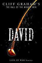 David (The Hall of the Mighty Men Book 2)