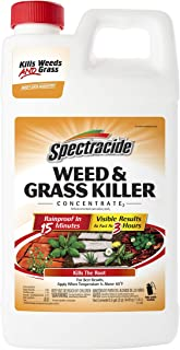Spectracide Weed & Grass Killer Concentrate, 64 fl oz