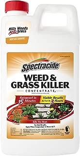 rate weed killers