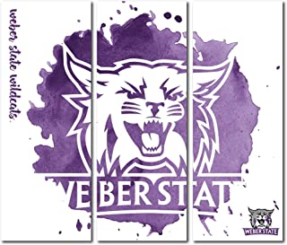Victory Tailgate Weber State Wildcats Canvas Wall Art Triptych Watercolor Design