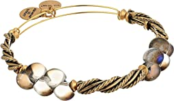 Alex and Ani - Spirit Spiral Bangle