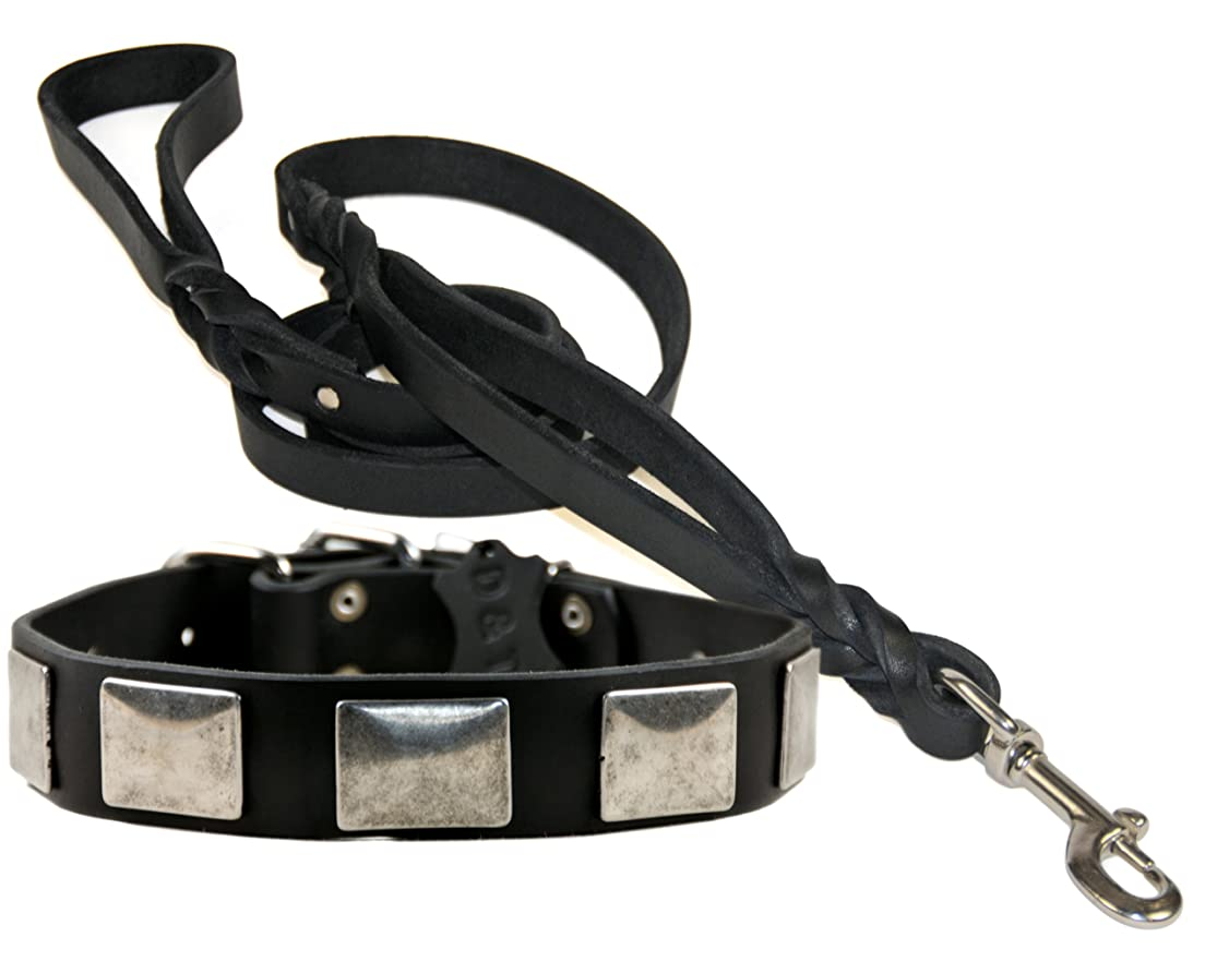 Dean & Tyler Vintage Leather Collar with Matching Braidy Bunch Leash for Pets, 26 to 30-Inch, Black rxnmybxf4