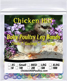 100 to 500 Baby Poultry Leg Bands 5/16
