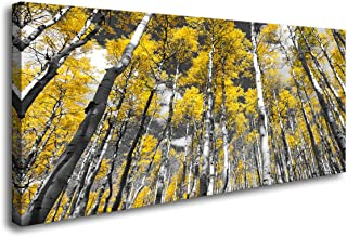 Baisuwallart- 1panel Canvas Prints Golden Yellow Forest of Fall Aspen Trees Paintings Wall Decor Framed Black and White Colorado Rocky Mountain Landscape Perfect for Home Decoration Office DÃcor