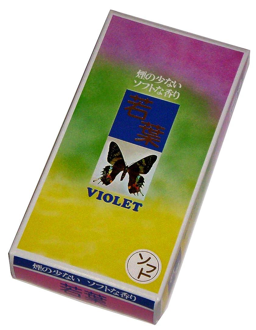 鈍い防腐剤雄弁な大発のお線香 ソフト若葉 YS-1