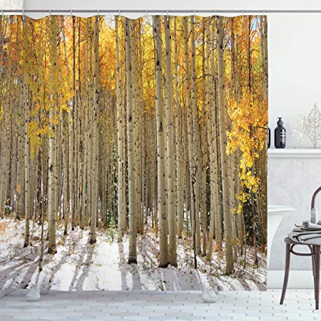 Amazon Com Ambesonne Forest Shower Curtain Aspen Trees With Warm Leaves In Snow Forest In Early Winter Time Landscape Cloth Fabric Bathroom Decor Set With Hooks 84 Long Extra Orange White Home