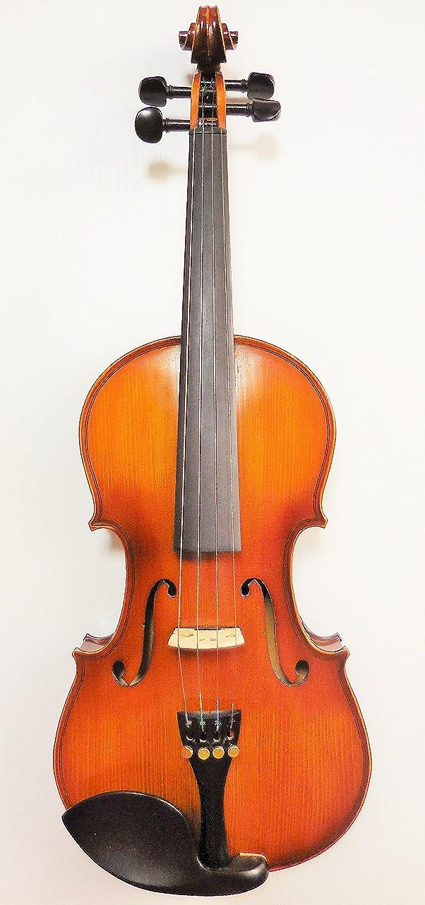 心から興奮するフィラデルフィアPretorio エレクトリックアコースティックバイオリン (スタンダード)