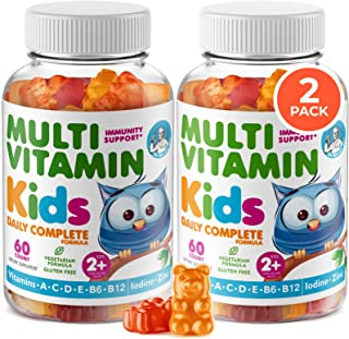 Kids Multivitamin Gummies 14 Essential Vitamins Daily Supplement for Ages 2+ Vitamin A, C, D, E Vegetarian B6 & B12, Zinc,...