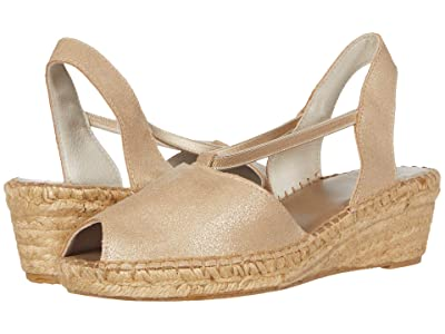 Andre Assous Dainty (Platino Suede) Women