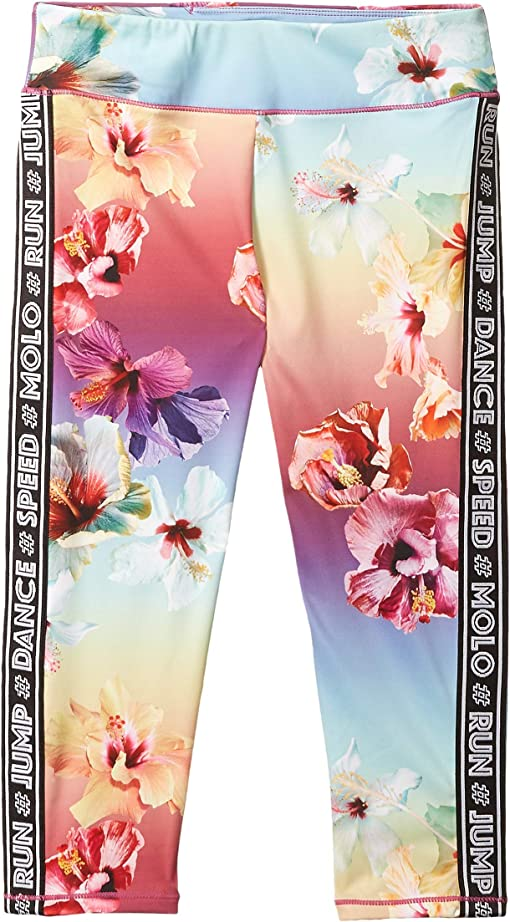 Hibiscus Rainbow