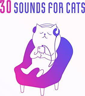 free kitten sounds