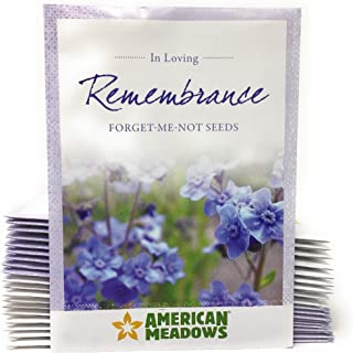 in Loving Remembrance - Individual Forget Me Not Flower Seed Packet Favors - Ready to Give - Pack of 20