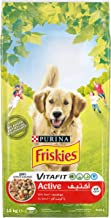 Purina Friskies Active Dog Food with Beef, Green, 10 Kg, 12367518