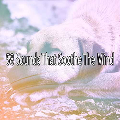 Soothing Symbols Of Sanctity by Sounds of Nature Relaxation on