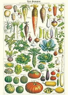 Cavallini & Co. Le Jardin Lámina de papel 20