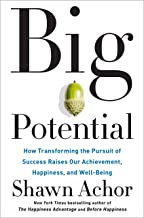 Big Potential: How Transforming the Pursuit of Success Raises Our Achievement, Happiness, and Well-Being Book PDF