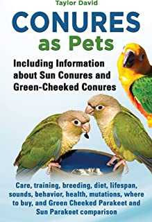 Best conure care and training Reviews