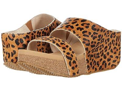 VOLATILE Mobina (Tan/Leopard) Women