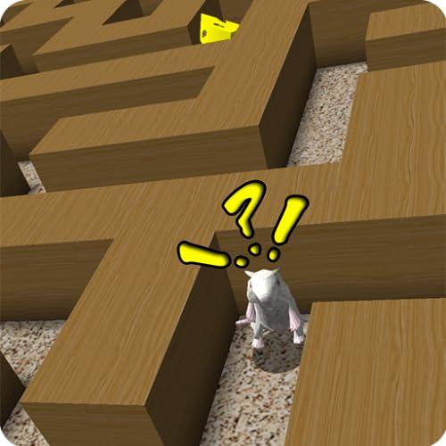 A Rat Race Maze Craze