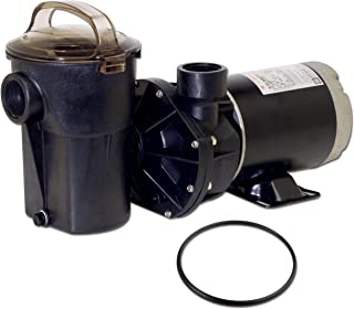 In The Swim Hayward Powerflo LX 1.5 Horsepower Above Ground Pool Pump with Replacement Lid O-Ring - 2 Item Bundle