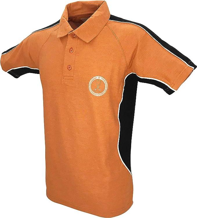 15 opiniones para TEEPOLO Camisa de golf para hombre, ajuste regular con paneles laterales de