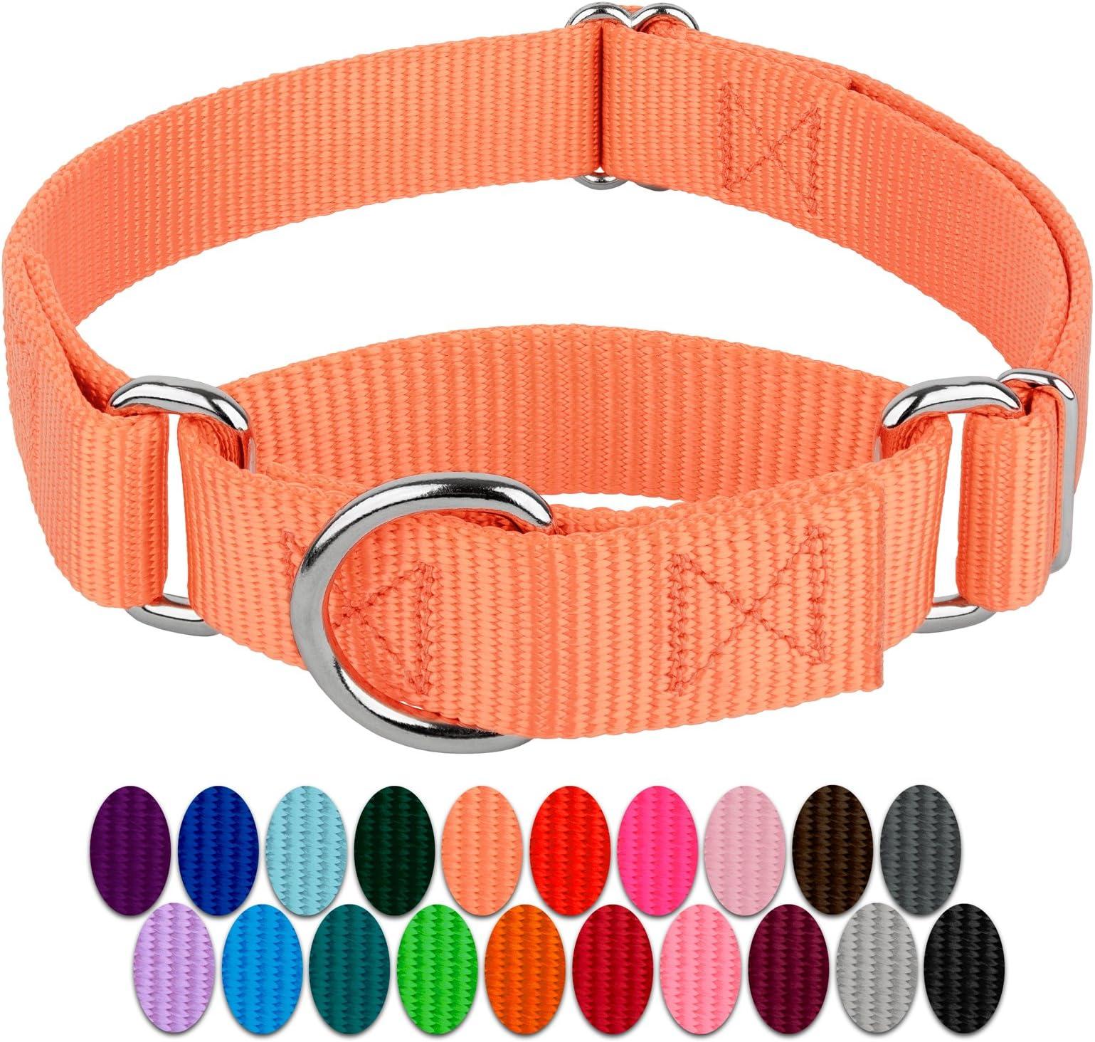 dog collar and lead set teal 2 inch dog collar whippet collar mermaid dog collar  scales sighthound collar fabric dog collar bundle