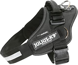 Julius-K9 16220-IDC P IDC PowerHarness with Side Rings for Dogs