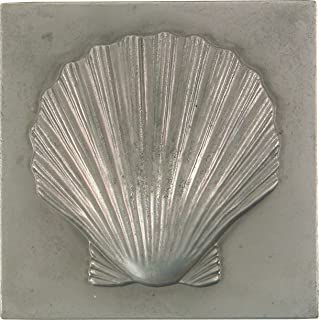 Best shell decorative accents Reviews