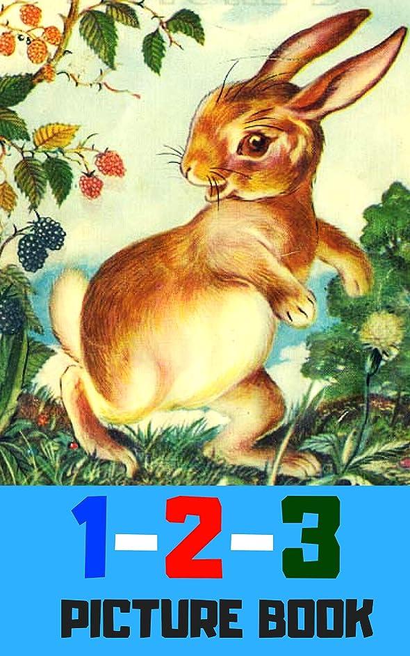 起こる除外する代理人1 2 3 picture book: Number for kid and song (book for kids) (English Edition)