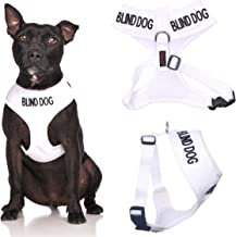Blind Dog (Dog Has Limited/No Sight) White Color Coded Non-Pull Front and Back D Ring Padded and Waterproof Vest Dog Harness Prevents Accidents by Warning Others of Your Dog in Advance