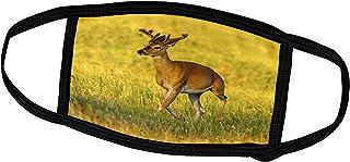 3dRose Danita Delimont - Deer - South Dakota, Custer SP. White-Tailed Deer Buck with Velvet Antlers. - Face Masks (fm_2600...