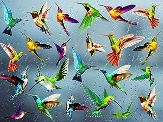 KAIRNE 24 Pcs Autocollant de Fenêtre de Colibri,Oiseaux Stickers pour Fenêtre,Sticker Mural Oiseaux Colorée,Empêcher D'Imp...