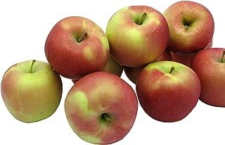 fuji apple farm
