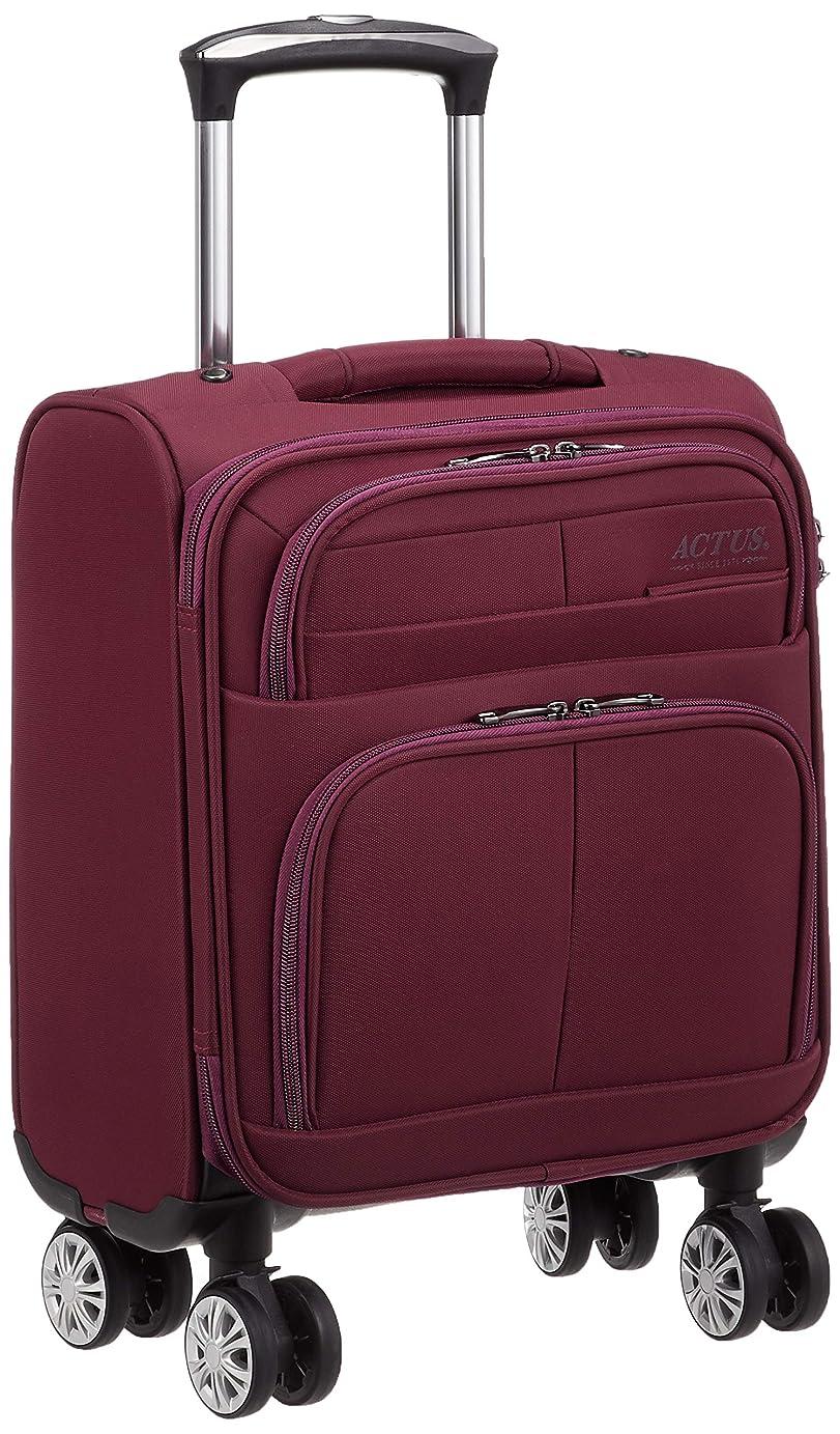 口述見てきゅうり[アクタス] スーツケース ソフト モンタナ 74-50760 18L 45 cm 2.3kg