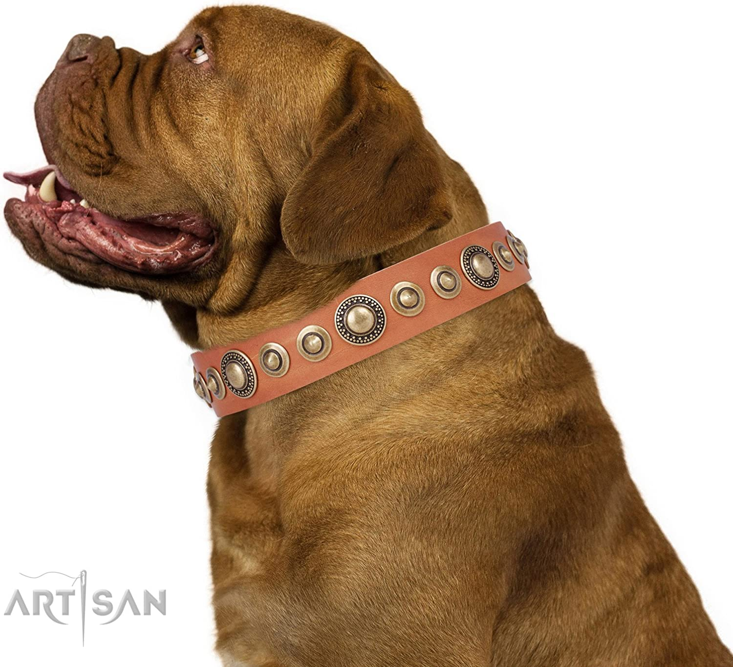 FDT Artisan 16 inch Tan Leather Dog Collar with Brass Plated Decorations Feast of Luxury  1 1 2 inch (40 mm) Wide