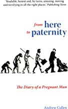 From Here To Paternity (A Dad's Diary Book 1)