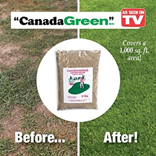 Best canada green seed Reviews
