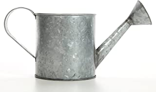 Hosley 7 Inch High Galvanized Large Watering Can. Ideal Gift for Weddings Parties Craft DYI Spa Dried Flower Arrangements Outside Garden Planter O4