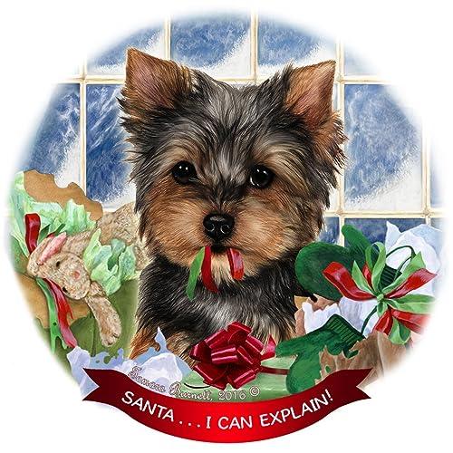 Yorkie Terrier Gifts: Amazon com