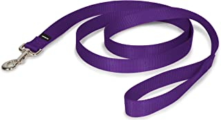 """PetSafe Nylon Dog Leash - Strong, Durable, Traditional Style Leash with Easy to Use Bolt Snap - 1"""" x 6', Deep Purple"""