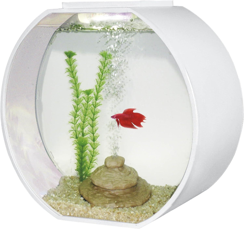 AA Deco O Aquarium, White