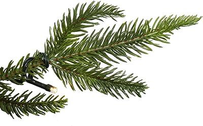 Northlight 9' Pre-Lit Full Roosevelt Fir Artificial Christmas Tree - Warm White LED Lights