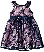 Embroidered Mesh Dress (Infant)