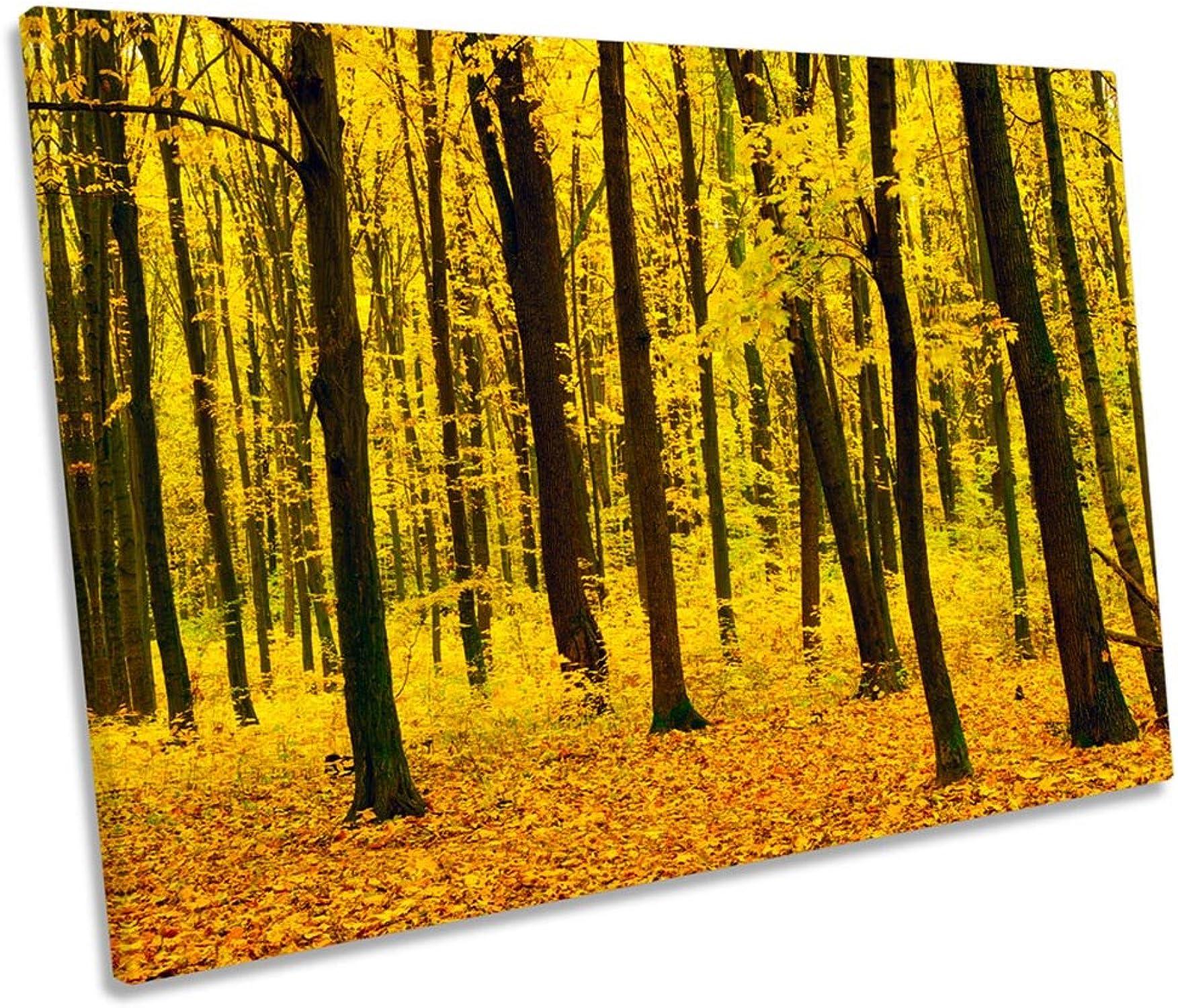 ahorre 60% de descuento Canvas Geeks Lienzo Impreso para Parojo con diseo de árboles árboles árboles del Bosque Amarillo Sunset Single, Amarillo, 60cm Wide x 40cm High  ganancia cero