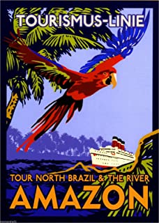 A SLICE IN TIME Brazil Amazon River Oceanliner Vintage Parrot Travel Collectible Wall Decor Poster Advertisement Print. Measures 10 x 13.5 inches