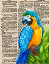 Notebook: 8x10 Inch Matte Softcover Paperback Journal With 120 Blank Lined College Ruled Pages, Upcycled Dictionary Parrot Macaw Cover Design