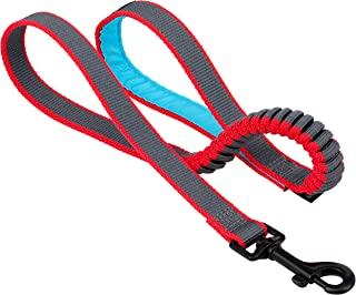 Kurgo Springback Leash for Dogs, Dog Running Leash, Bungee Leash Eases Pulling, Padded Handle, Blue/Grey, 30 Inch Length